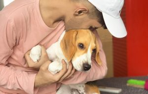 Pet Nutrition Guidance